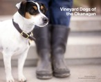 Vineyard Dogs of the Okanagan 20170731 Cover